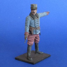 The Austro-Hungarian officer  WWI